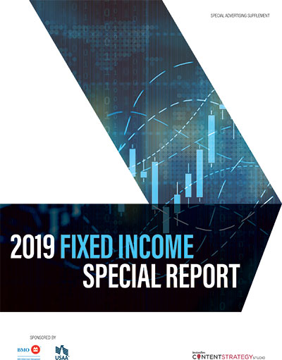 2019 Fixed Income Special Report