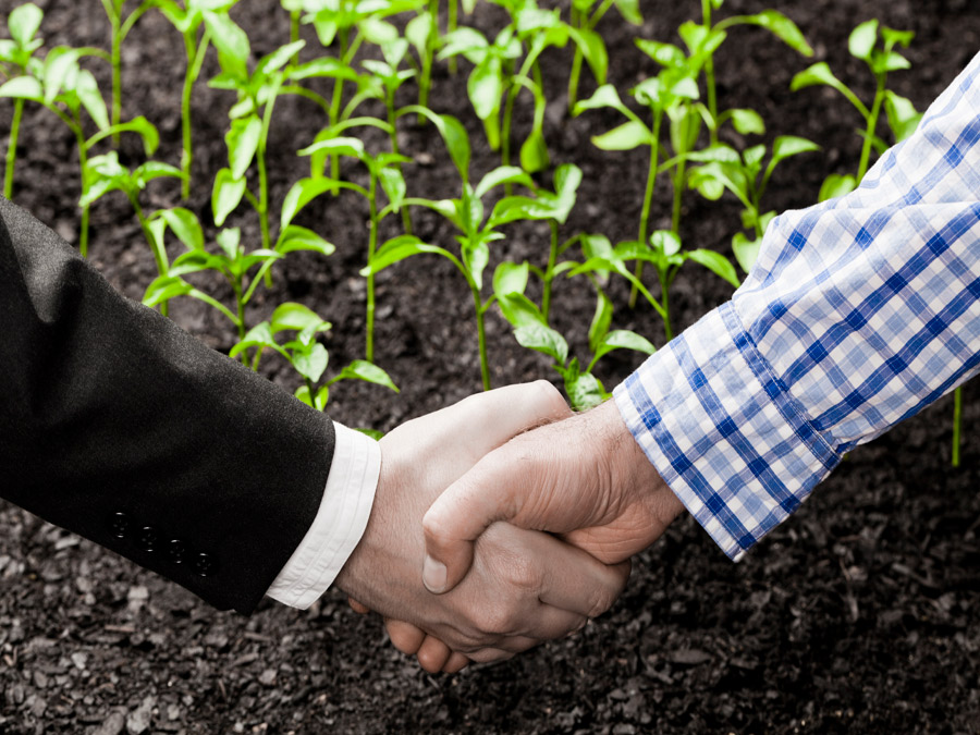 Apollo joins other private equity players in impact investing arena