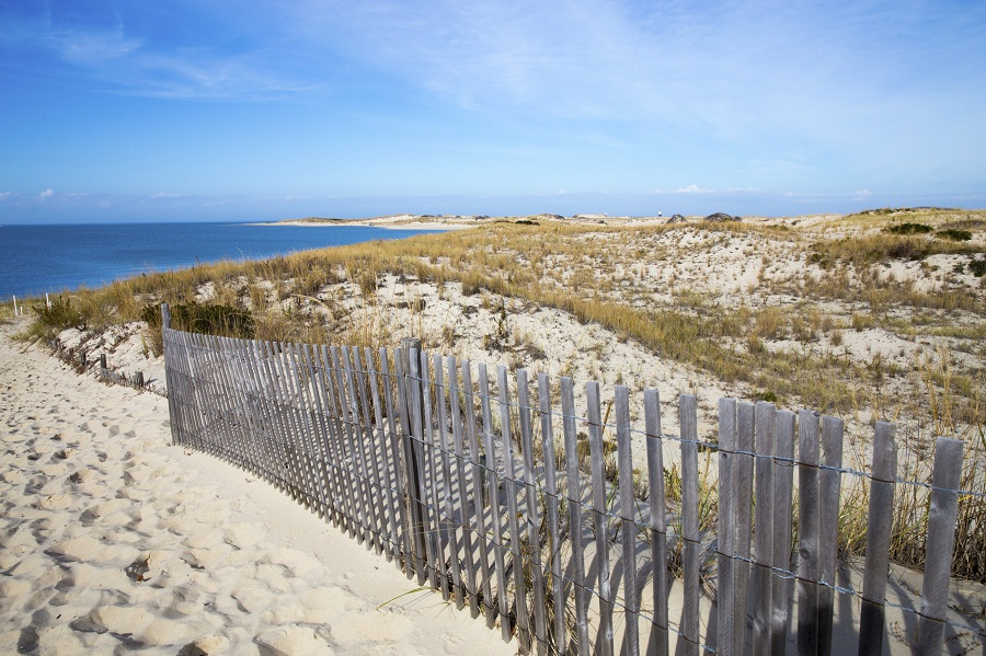 State-sponsored retirement plan proposed in Delaware - InvestmentNews